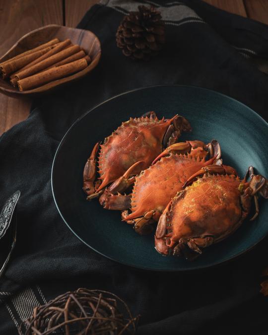 Crabe - Tourteau - Araignée de mer