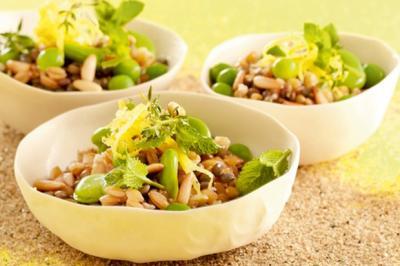Taboulé d'épeautre aux légumes frais et secs