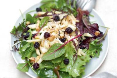 Salade de jeunes pousses au chèvre et vinaigrette de mûres